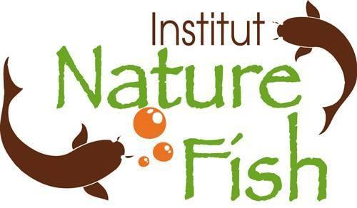 Sensación Bachata Festival, Institut Nature Fish