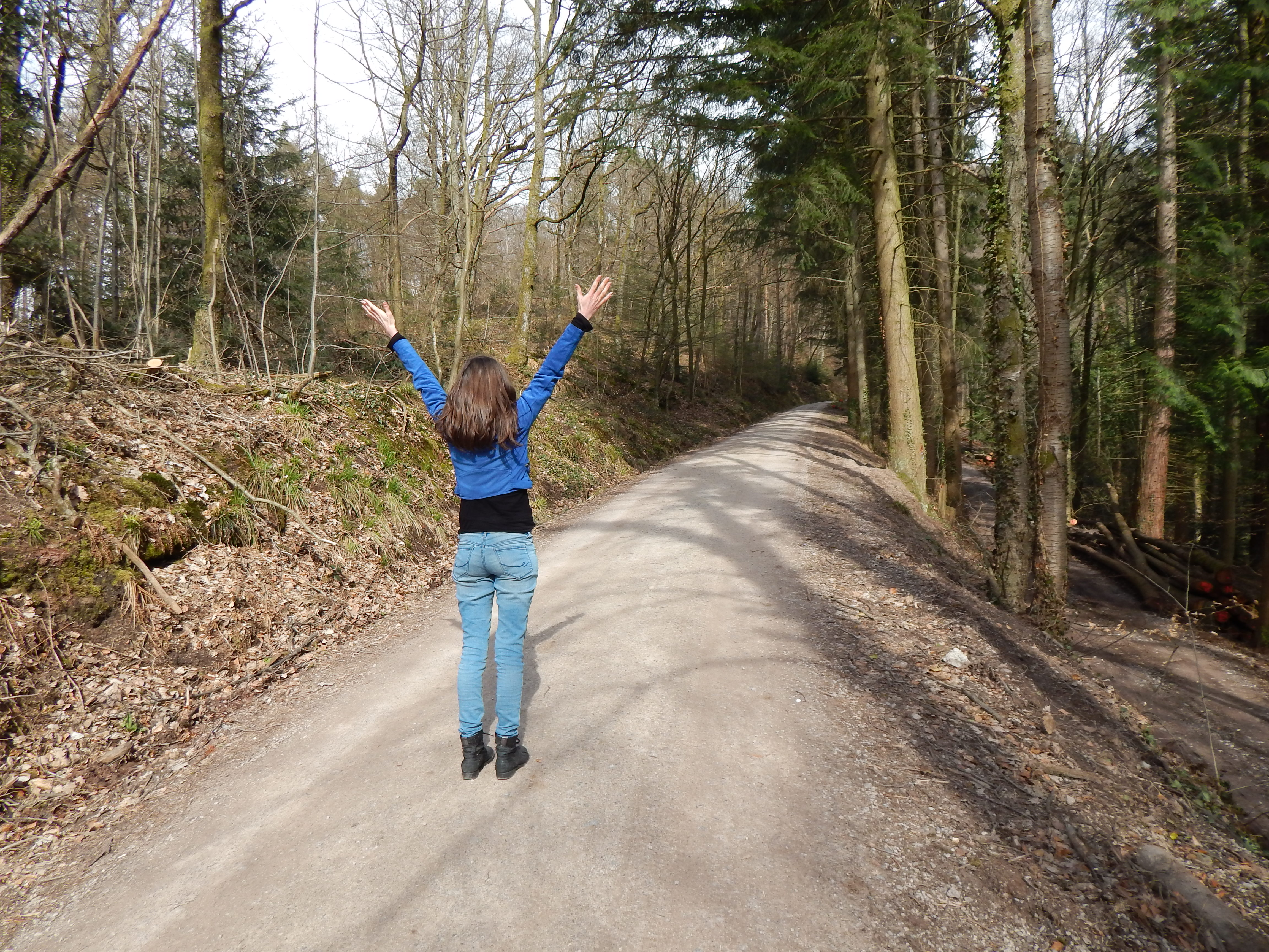 Bain de Forêt : allier nature et bien-être – Pourquoi pas dans la forêt de Haguenau ?