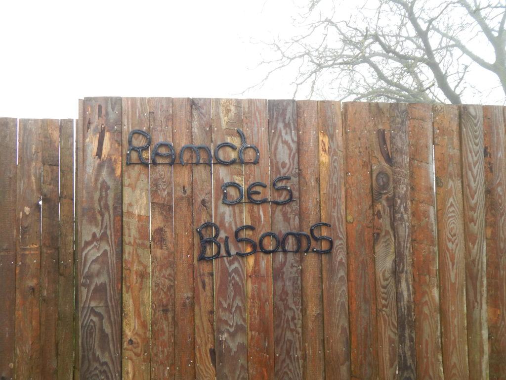 Séjour coup de cœur au Ranch des bisons